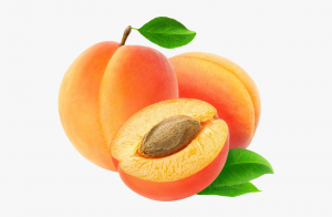 apricot aljazeeratrade