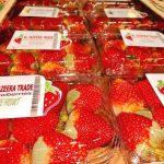 al jazeera trade fresh strawberries