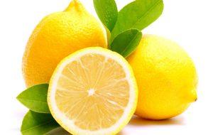 Providing all kinds of citrus fruit